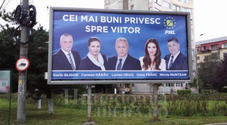 De ce a pierdut  PNL în județul Hunedoara