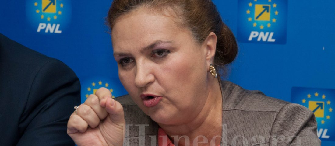 CECCAR Hunedoara: Ca să se aleagă cine trebuie, modificăm și legislația