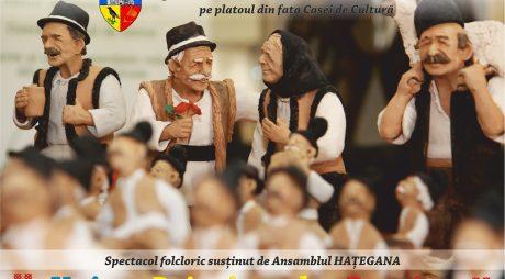 Ansamblul HAȚEGANA în spectacol la Hunedoara pe 24 ianuarie