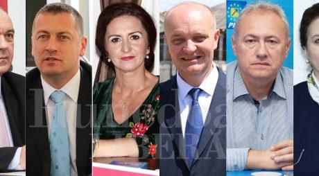 Cum au gestionat parlamentarii hunedoreni criza politică a momentului