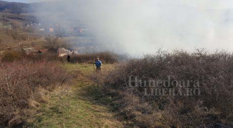 O femeie a murit încercând să stingă un incendiu de vegetație
