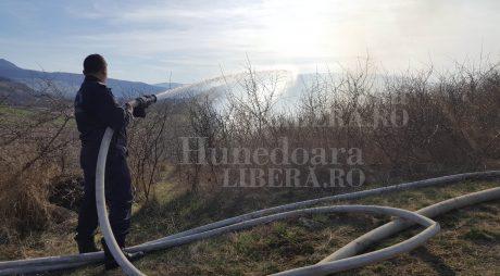 APIA: STOP INCENDIERII TERENURILOR!