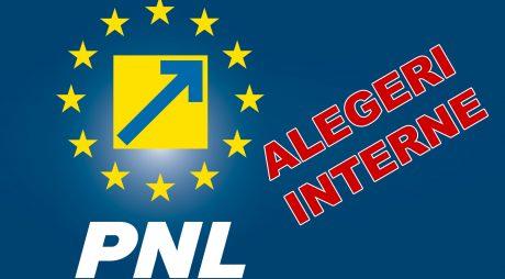 Alegeri PNL Hațeg, în 26 martie