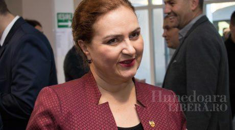 Carmen Hărău, Marele Inchizitor de la PNL