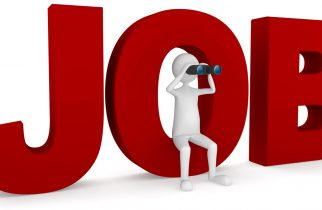 Locuri de muncă vacante în județ