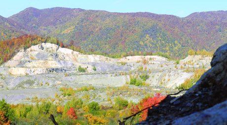 PENTRU INFORMAREA CORECTA A OPINIEI PUBLICE    Deva Gold dă României 435 de hectare de pădure (P)