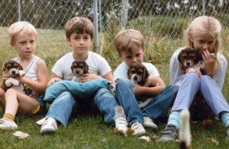 Ce câini se înțeleg cel mai bine cu copiii?