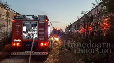 Peste 1.600 de intervenţii ale pompierilor, în ultimele 24 de ore