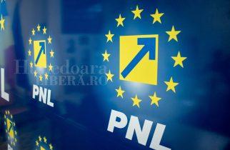 Comunicat de presă PNL Hunedoara