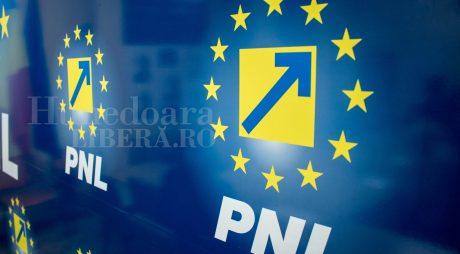 Ani grei de închisoare pentru un fost vicepreședinte PNL Hunedoara
