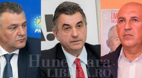Greșeli de campanie electorală – Deva 2017