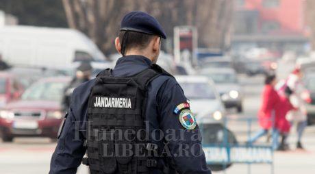 Un jandarm – șeful unei rețele de traficanți de etnobotanice!