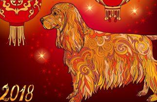 Anul Nou Chinezesc începe în 16 februarie