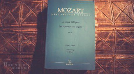 Mozart, pe scena teatrului din Deva. Trei zile de operă pentru toți!