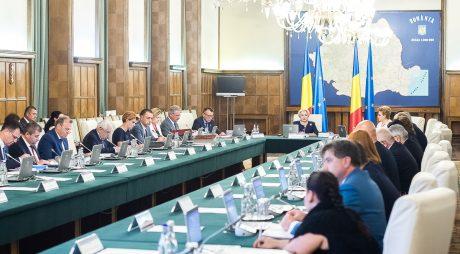 Premierul Dăncilă și 10 miniștri pleacă în Polonia