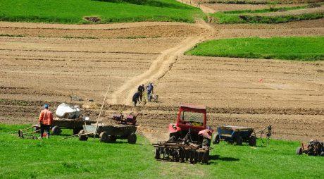 Preţul unui hectar de teren agricol în România ajunge la 60.000 de euro