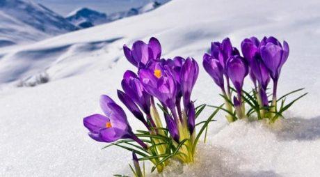 Superstiţii în luna februarie. Tradiţii şi obiceiuri din primele zile de Făurar