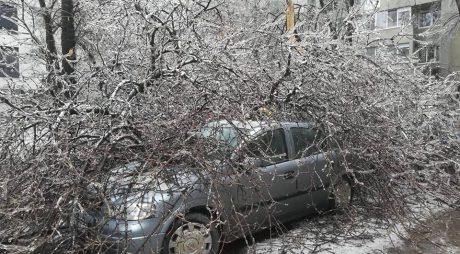Fenomene meteo severe – peste 360 de autoturisme avariate de arbori și stâlpi