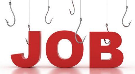 Rata şomajului în forma ajustată sezonier a scăzut la 3,8%