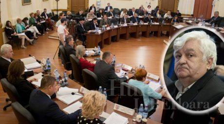 Cine devine consilier județean PSD în locul lui Ion Hojda