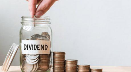 Etapele împărțirii profitului companiei sub formă de dividende