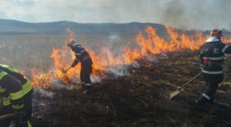 14 incendii de vegetație uscată în 3 zile