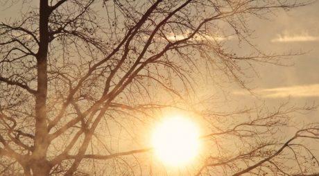 Temperaturi în creștere, maxima de duminică va fi de 15 grade Celsius!