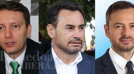 Trei hunedoreni pe lista PNL pentru europarlamentare