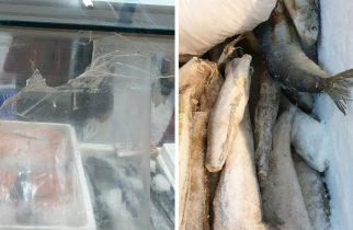 Bombă alimentară, în vestul țării! Zeci de kilograme de peşte expirat de câteva luni, de vânzare la magazin