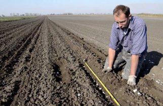 Sprijin financiar de 3.000 de euro de la stat pentru o categorie de agricultori