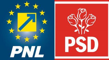 BEJ Hunedoara admite sesizarea PNL împotriva PSD