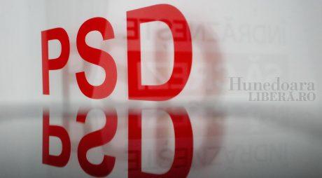 PSD a depus listele pentru parlamentare la Biroul Electoral de Circumscripție Județeană nr. 22