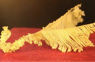 DOZA DE CULTURĂ: Muzeul Aurului din Brad