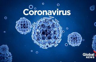 GCS: 238 de noi cazuri de persoane cu COVID-19; numărul total de îmbolnăviri – 19.907