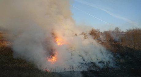 Val de incendii de vegetaţie uscată în judeţul Hunedoara