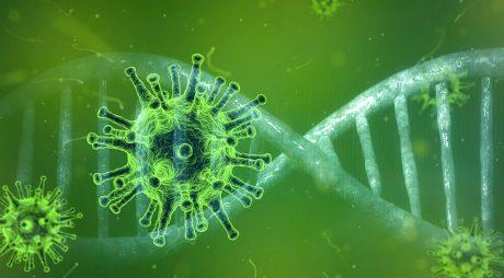 GCS: Cele mai multe cazuri nou confirmate de coronavirus – în Bucureşti, Vaslui, Constanţa, Iaşi