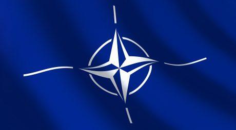 Blue flag NATO and wave. 3d illustration