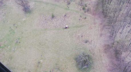 Dobra: Tăiere nelegală de material lemnos depistată pe timpul unei acțiuni de patrulare aeriană