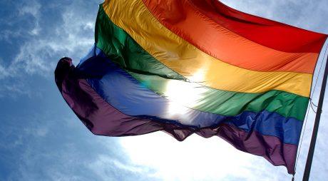 Ungaria: O companie de distribuţie, amendată din cauza unei cărţi pentru copii cu părinţi homosexuali