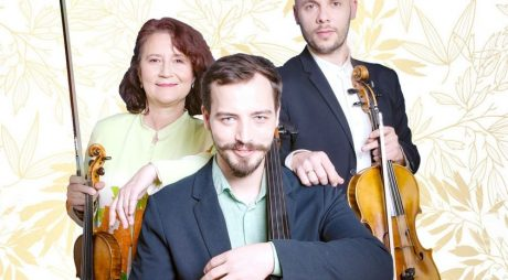 "Concert cameral ,,Trio Petre"" la Deva – miercuri, 29 septembrie 2021"