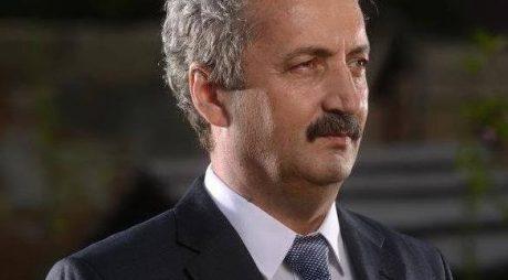 Viorel Arion, ales președinte al Organizației Județene a PMP Hunedoara